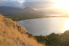 Tanjung View